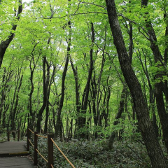 휴애리자연생활공원 여행 사진