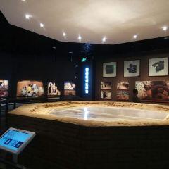 浙江省博物館孤山館區用戶圖片