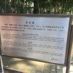 Yiyunguan User Photo