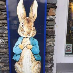 彼得兔世界用戶圖片