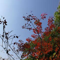 京溪生態公園用戶圖片