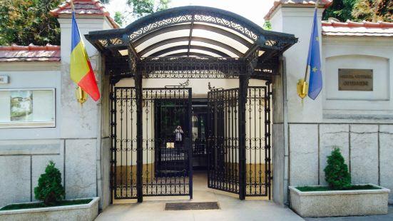 考特羅塞尼宮 (Palatul Cotroceni)