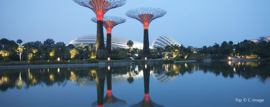 Popular Attractions in Singapore
