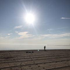 Oak Street Beach User Photo