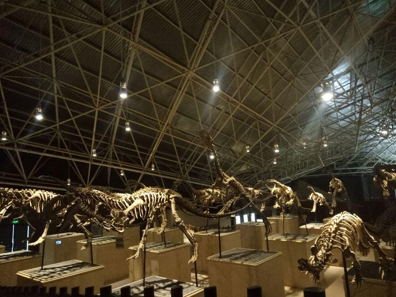 e951a4ec4fa3 Lufeng World Dinosaur Valley | Tickets, Deals, Reviews, Family ...