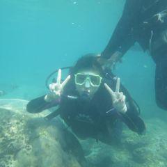 Yalong Bay Underwater World User Photo