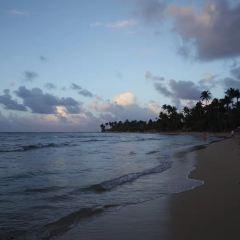 Macao Beach用戶圖片