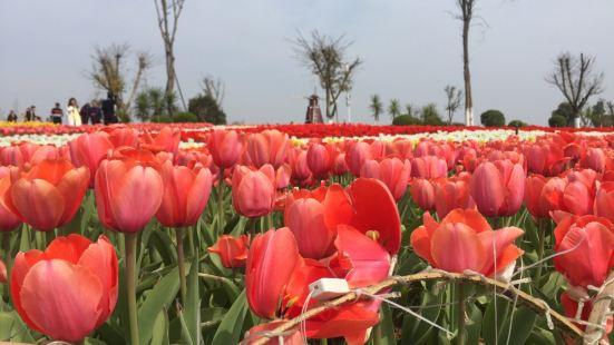 Jinxiu Tianyuan Scenic Park