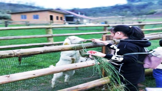 Wugude Dujia Farm