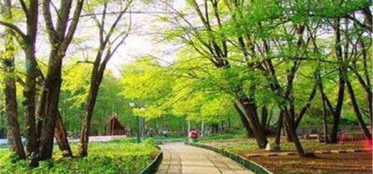헤이룽장성 삼림식물원2
