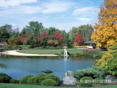 蒙特利爾植物園