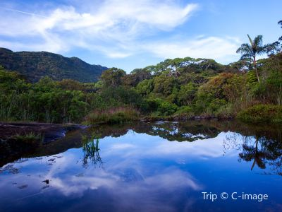 辛哈拉加森林保護區
