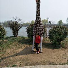 運河灣森林動物園用戶圖片