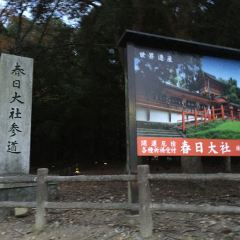 Kasuga Grand Shrine User Photo