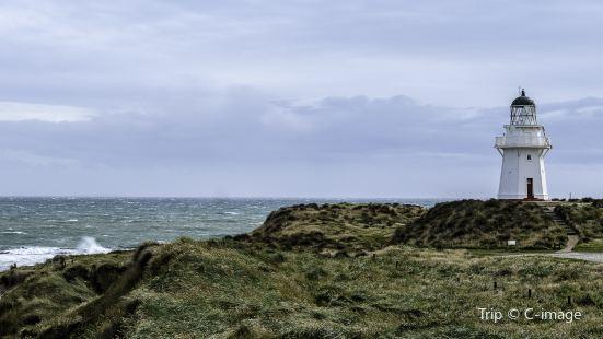 Catlins Coastal Heritage Trail