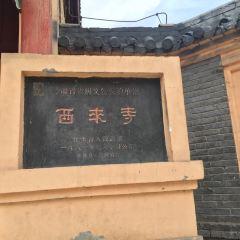 Xilaisi User Photo