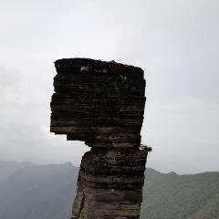 梵淨山用戶圖片
