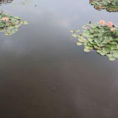 하이완(해만) 공원 여행 사진