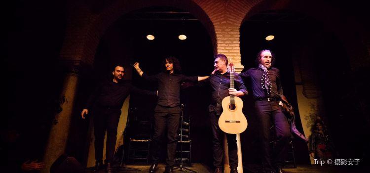 Museum of Flamenco Dance1