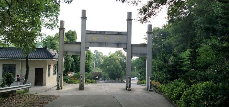 구룡산 국가삼림공원3
