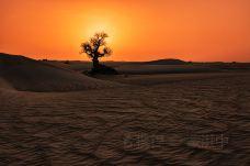 塔克拉玛干沙漠-巴音郭楞-doris圈圈