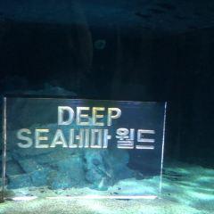 釜山水族館用戶圖片