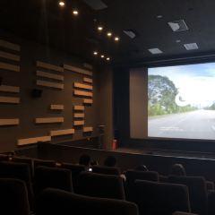 Palace Cinema User Photo