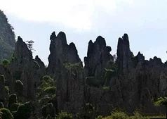 Nidang Stone Forest  User Photo