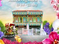 【新加坡推薦】濱海灣花園蘭花盛事開展啦!快來花園城市打卡吧