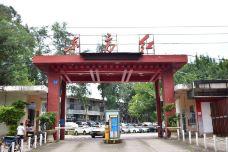 东方红创意园-广州-携程旅行顾问郭瑞