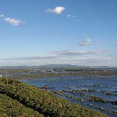 珍寶島濕地公園用戶圖片
