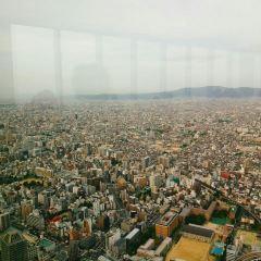 Abeno Harukas User Photo