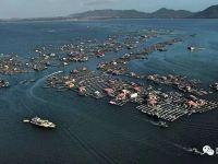 """用無人機來看海南陵水這塊""""海上吉普賽人""""的聚集地"""