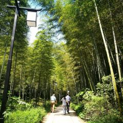 Shuikou Tea Culture Scenic Area User Photo