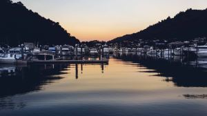 Picton,Recommendations