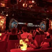 Crazy Horse Paris User Photo