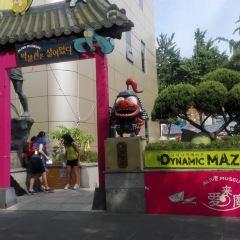 Alive 4D Art Museum (Insa-dong Main Branch) User Photo