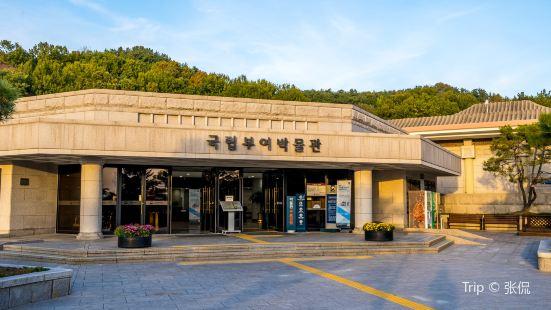 국립 부여 박물관