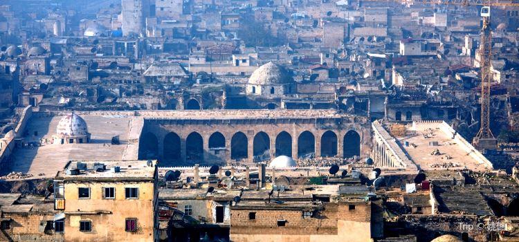 阿裡波大清真寺3
