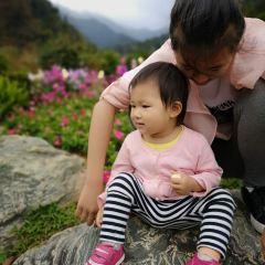 橋渓古韵景観地のユーザー投稿写真