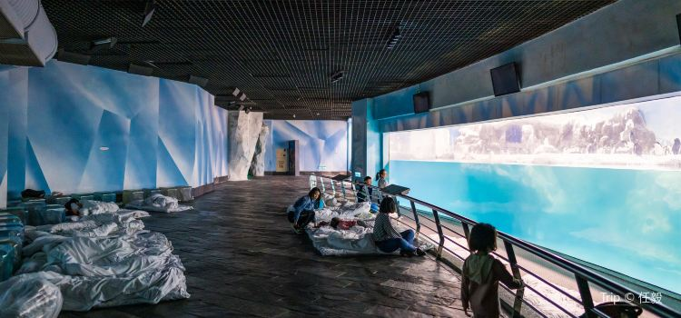 Museum of Marine Biology and Aquarium2