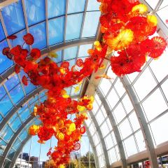Chihuly Garden and Glass User Photo