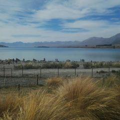 Lake Alexandrina User Photo