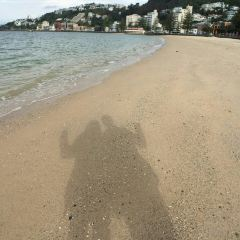 东方湾用戶圖片