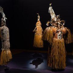 昆士蘭現代美術館用戶圖片