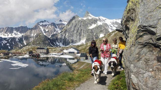 燦爛夏日徒步瑞士|走過山河湖泊,邂逅田園牧歌