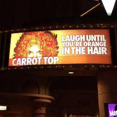 胡蘿蔔頭喜劇表演用戶圖片
