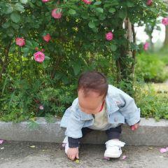 七彩生態園用戶圖片