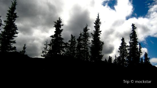 Blue Spruce Park