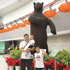 天津自然博物館用戶圖片